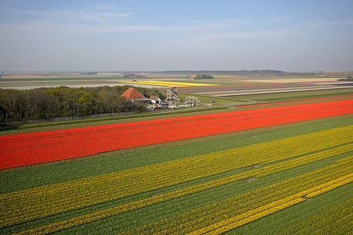 Red, green, yellow. And an ex farm.
