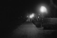 Leica M5