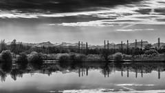 Reflets en noir et blanc