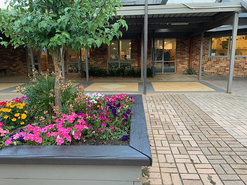 Flowers in front of Anglican Church, Canberra