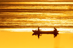 rowing in the spring evening_