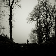 Walk in fog IV