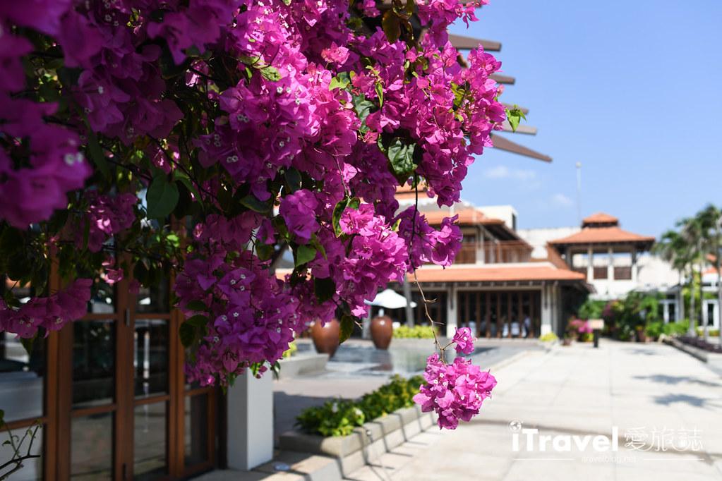 岘港富丽华大饭店 Furama Resort Danang (80)