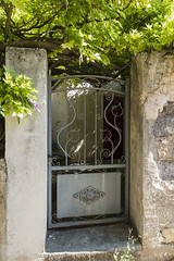 Gate and Vine - Photo of Châteauneuf-le-Rouge