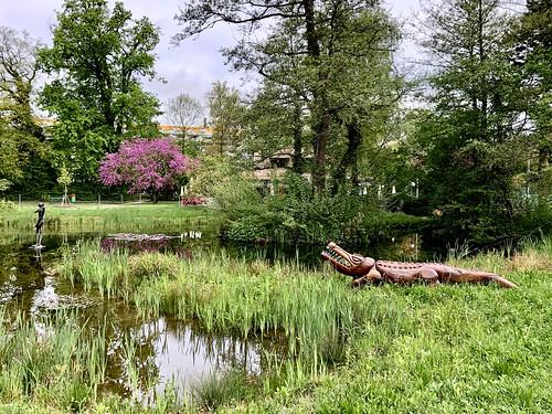 Geneva - 21 The Pond at Park Brot | Onex, GE