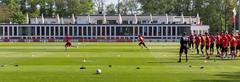 Fußballtraining der Spieler des 1. FC Kölns mit dem neuen Trainer André Pawlak, auf dem Fußballplatz am Geißbockheim Clubhaus