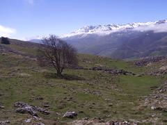 DSC03992_2019-04-28_11-54-14_Asté Bagnères-de-Bigorre Occitanie France