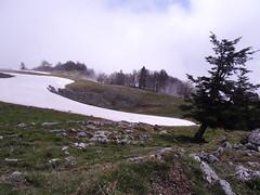 DSC03973_2019-04-28_11-39-59_Col du Lhéris D 935 Sainte-Marie de Campan Gripp