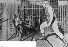 Herr Pagel ready to tackle the lion at Wirths Circus, Brisbane, 1903