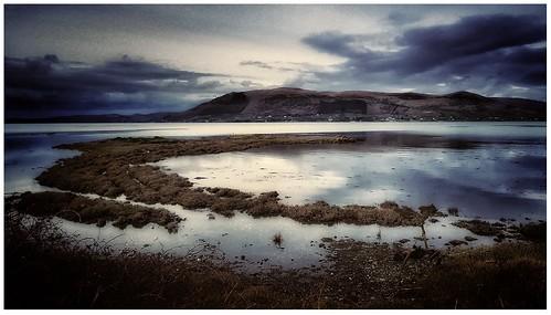 Quiet in the Bay