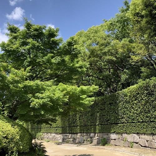 Shiratori-garden 1