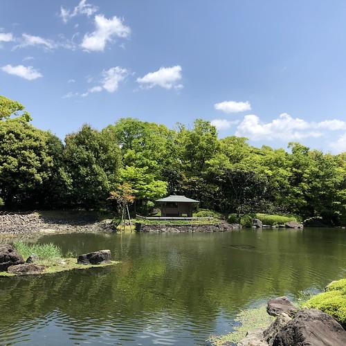 Shiratori-garden 9