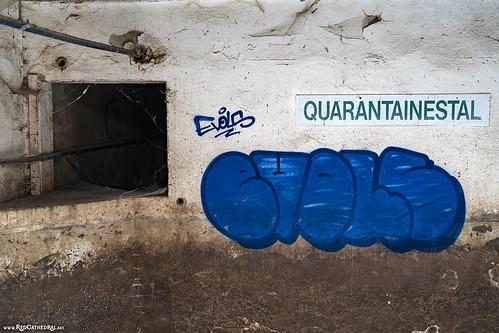Quarantainestal by Love