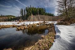 Walker Creek Wild and Scenic River