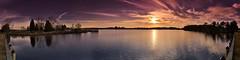 180° Panorama Blackwater National Wildlife Refuge Park