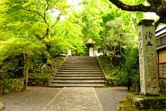 Anraku-ji, Sanmon (Gate) -2 (May 2019)