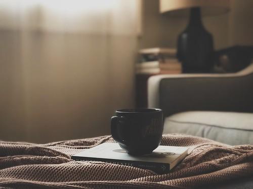 :: settled into morning softness ::