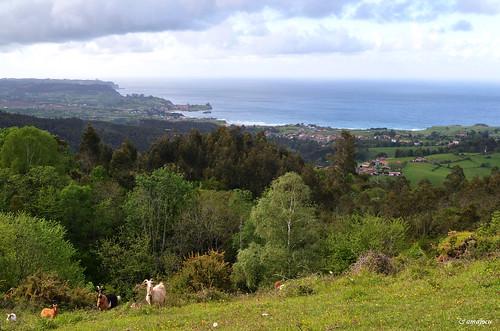 La costa desde el Sueve (Asturias)  Spain