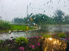 A rainy Mother's Day