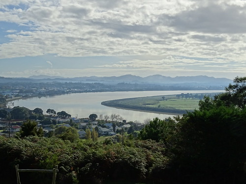View of Dargaville