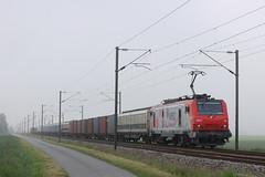 BB 37017 / Morbecque