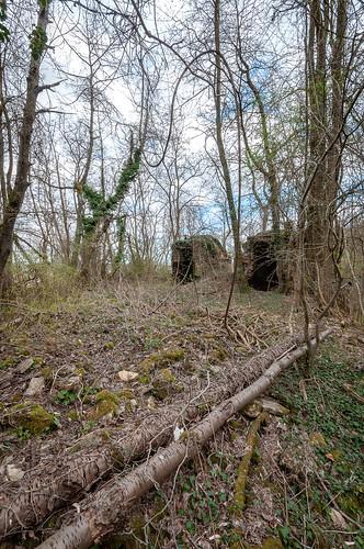 Ancien four à chaux (Soultz-les-Bains, France)-111