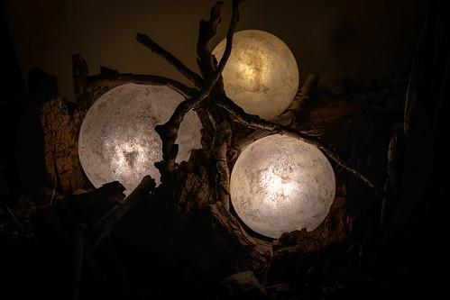 Lampenmittwoch - Lampwednesday 3087