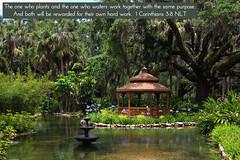 Washington Oaks Gardens FL