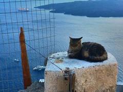 Highlights Greece Vacation: Athens, Delphi, Napflion, Santorini & Rhodes