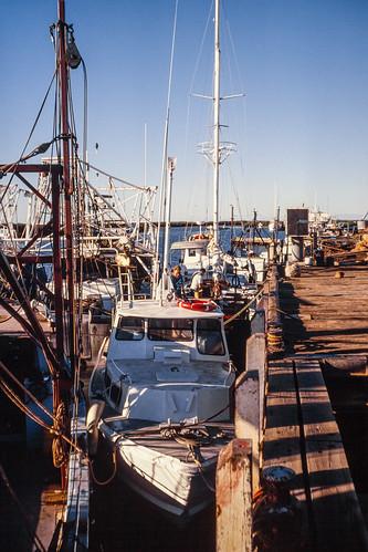 Survey Motor Boats at Onslow