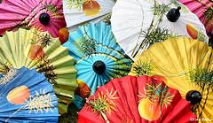 Umbrella Center & Silk Factory 2006