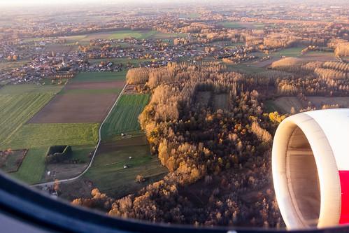 Herbstwald in Belgien