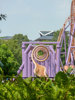 Photo 6 of 7 in the 10 Inversion Coaster gallery