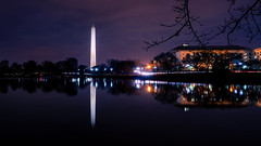 The Washington Monument Reflects in the Tidal Basin