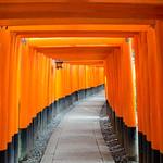 Primary photo for Day 5 - Hirakata Park and Inari temple