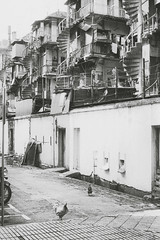 Singapore 1988
