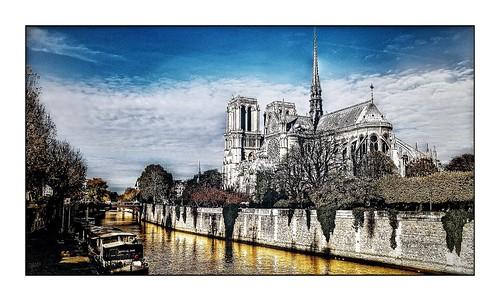 Hommage à Notre Dame de Paris...