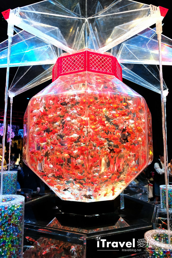 福冈展览推荐 博德金鱼の祭 (21)