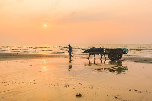_Y2U8043.0413.Sầm Sơn.Thanh Hoá