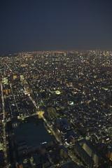 Tokyo Awake
