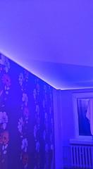 Transparentne i podświetlane sufity9