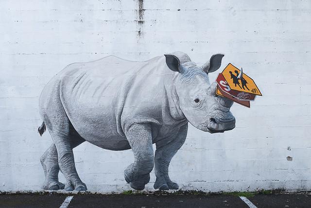 Rhino on Morrison