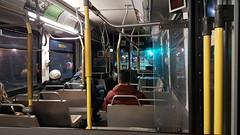 Inside a Halifax Transit bus, 2019