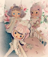 Holala Dolls