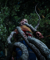 The Witcher 3: Wild Hunt / Taken By The Trees (Alt)