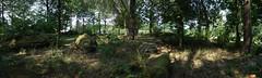 Le champ de menhirs de Sévéroué à Saint-Just - Ille-et-Vilaine - Août 2018 - 04 - Photo of Bruc-sur-Aff