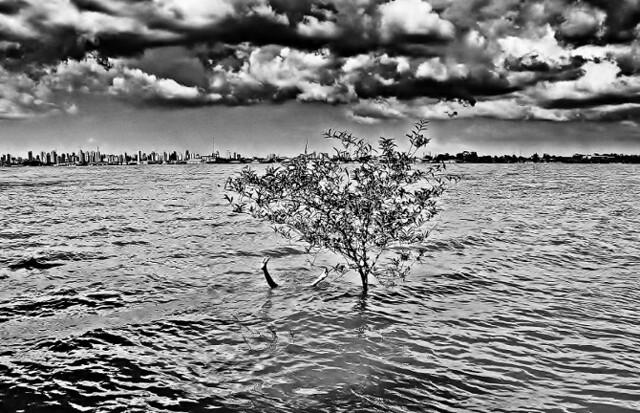 A fotógrafa paraense, Evna Moura, fará exposição de fotos em noite para alertar sobre exploração da Amazônia - Créditos: Evna Moura - Reprodução