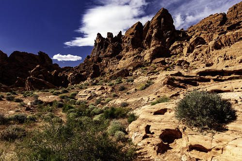 02469376422359-111-19-04-Sandstone Landscape in Valley of Fire-1