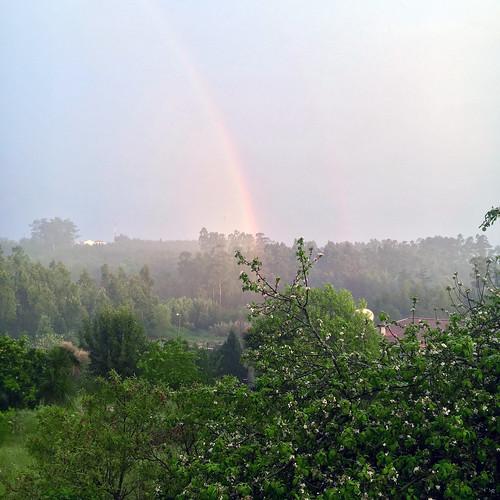Lick The Rainbow