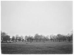 Misty Greenwich Park